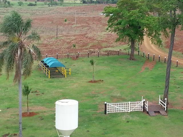 Fazenda Dourados, região Barro Preto, Ótimo preço