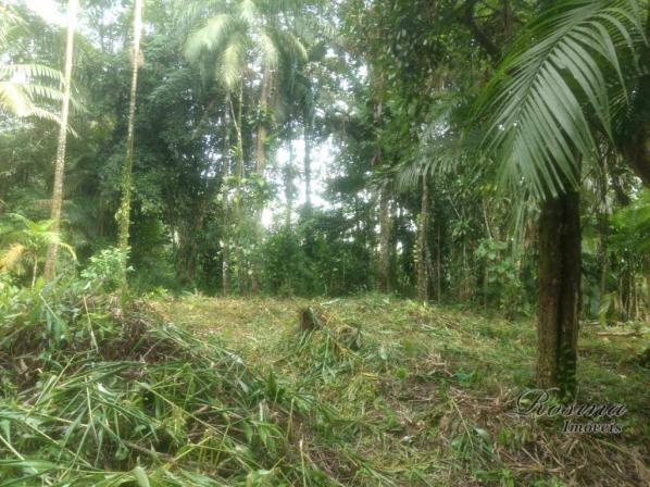 Terreno à venda, 20000 m² por R$ 88.000,00 - Capituva - Morretes/PR - Foto 13