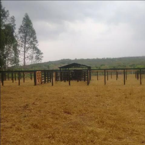 Excelente Fazenda em Itiquira - MT com 1.300 hectares