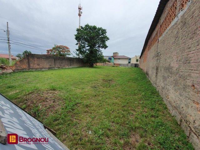 Terreno à venda em Coloninha, Florianópolis cod:T6-37518 - Foto 2