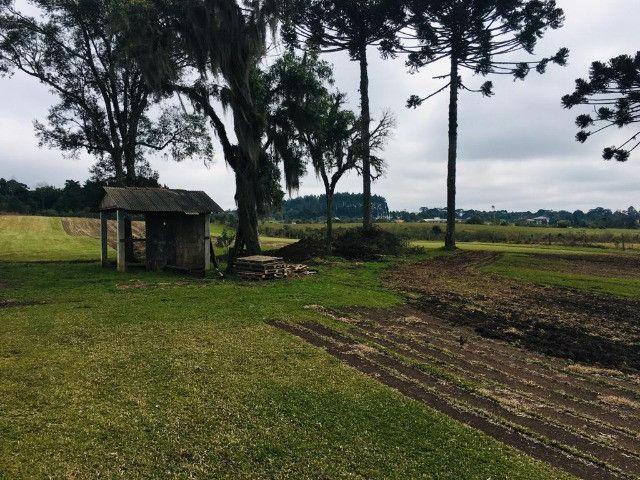 Área Rural em São José dos Pinhais - Foto 14