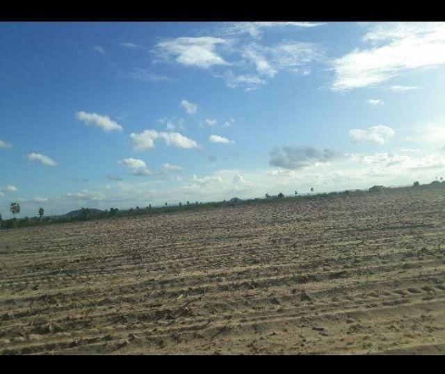 Otima Fazenda com 190 Hectares entre Lagoa de Pedras e Serrinha
