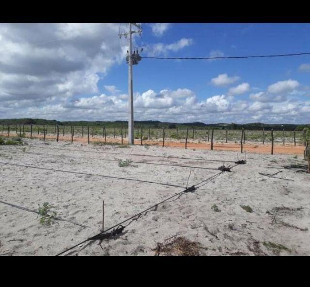 Linda Fazenda com 70 hectares na região de Ceará mirim com rio perene - Foto 3