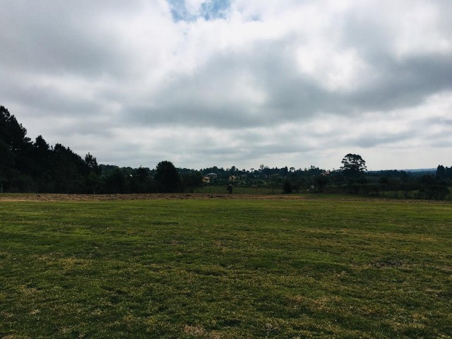 Área Rural em São José dos Pinhais - Foto 4