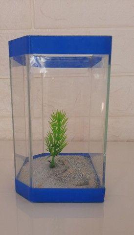 Aquário de vidro pequeno peixe A.L 13x11 cm - Foto 4