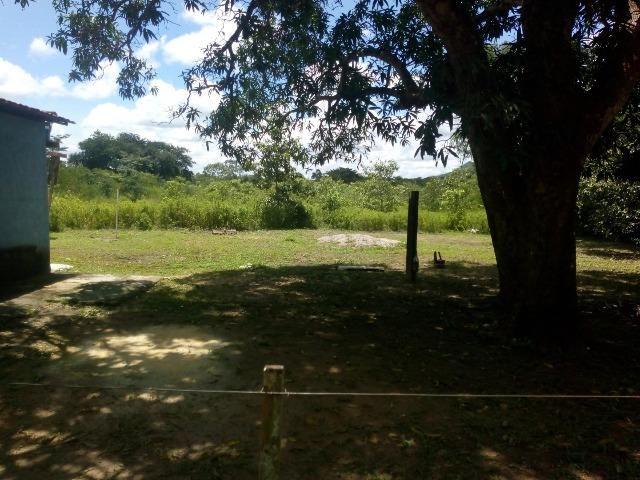 Chácara em Santo Antônio - Foto 5