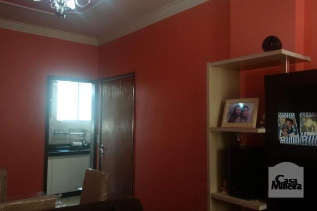 Apartamento à venda com 3 dormitórios em Salgado filho, Belo horizonte cod:241475 - Foto 2
