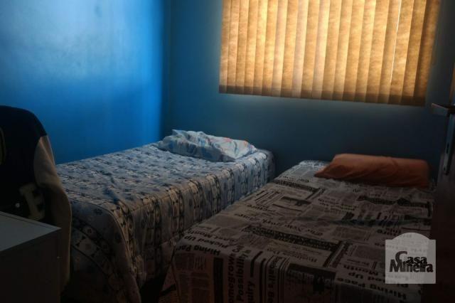 Apartamento à venda com 3 dormitórios em Salgado filho, Belo horizonte cod:241475 - Foto 6