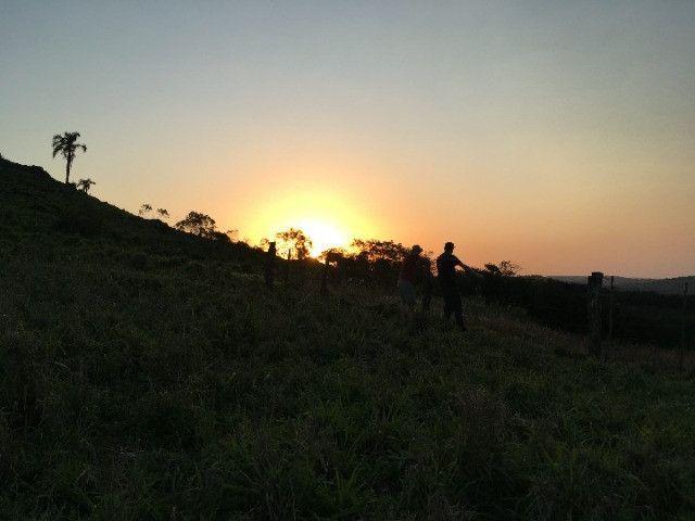 Sitio em Santo Antônio 8 Ha com Campo, Roça e Galpão. Linda Vista. Peça o Vídeo Aéreo - Foto 6