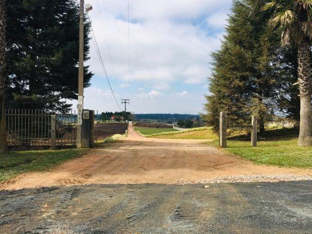 Área Rural em São José dos Pinhais - Foto 12