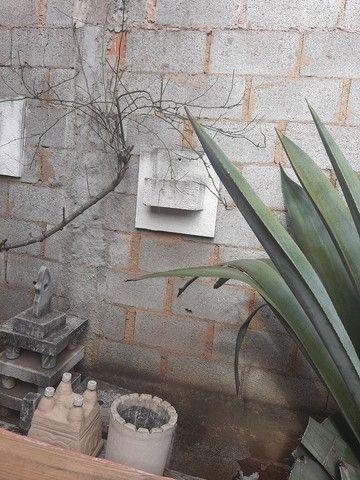 VASOS PARA PLANTAS - Foto 4
