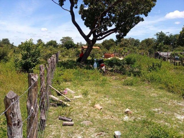 Vendo terreno em Boa hora/ PI - Foto 2
