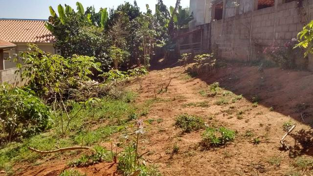 Terreno em lagoinha - Foto 6