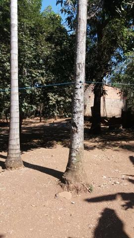 Chácara Residencial Triunfo - Foto 13