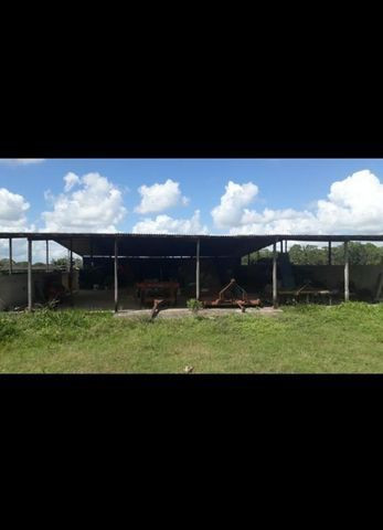 Linda Fazenda com 150 Hectares estruturada na Região de Macaiba - Foto 3