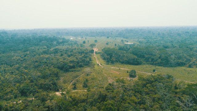 Fazenda próxima de Rio Branco - Acre - Foto 7