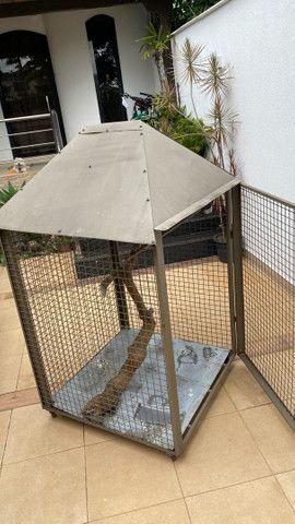 Viveiro/ gaiola com rodízios.  - Foto 3