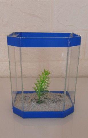 Aquário de vidro pequeno peixe A.L 13x11 cm - Foto 2