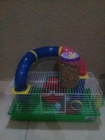 casinha grande hamster, valor 100,00 - Foto 4
