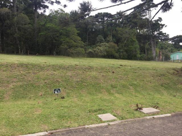Terreno à venda, 720 m² por r$ 618.338,53 - centro - canela/rs - Foto 2