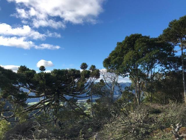 Belíssima chácara de altitude - Foto 6