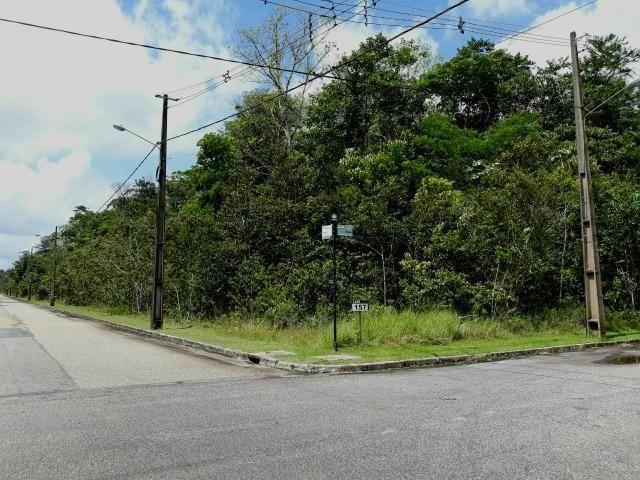 Terreno à venda - Condomínio Miriti Internacional - Ananindeua/Pa - Foto 14