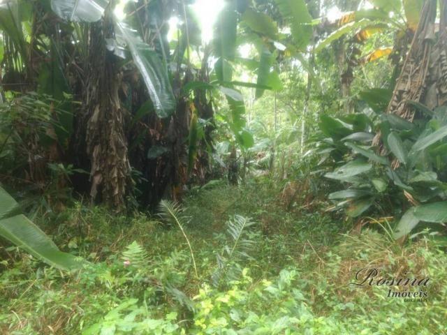 Terreno à venda, 20000 m² por R$ 88.000,00 - Capituva - Morretes/PR - Foto 9