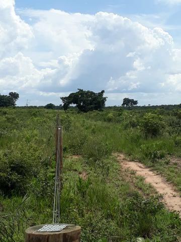 Fazenda de 853 hectares .400 hectares mecanizados . Colinas do Tocantins- TO - Foto 18