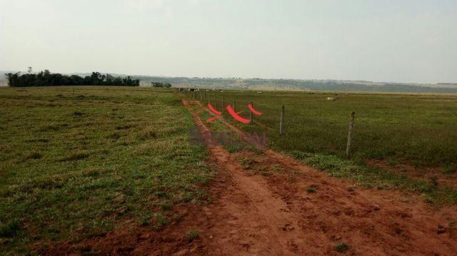 8051 | Fazenda à venda em NÃO INFORMADO, NAVIRAI - Foto 2