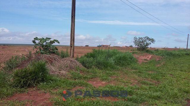 8067   Sítio à venda em GLEBA RIBEIRÃO ANDIRÁ, PRESIDENTE CASTELO BRANCO - Foto 4