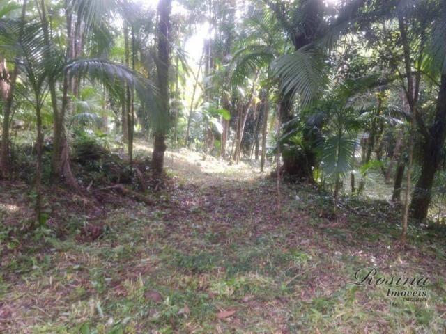 Terreno à venda, 20000 m² por R$ 88.000,00 - Capituva - Morretes/PR - Foto 6