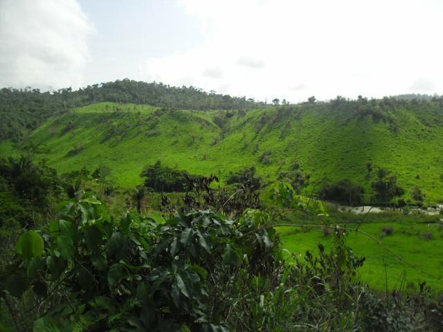 Imperdível vendo excelente Fazenda em Bom Jardim-Ma - Foto 3