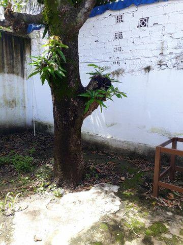 Vendo duas casas Em Itamaracá Bairro do Pilar - Foto 4
