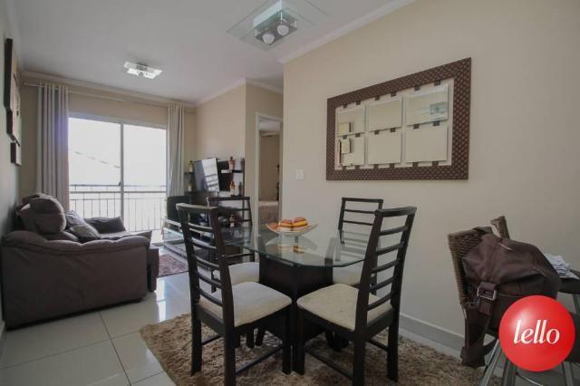 Apartamento para alugar com 2 dormitórios em Belém, São paulo cod:211579 - Foto 4