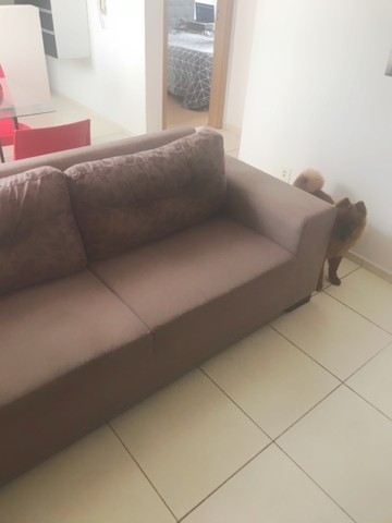 Sofá sem defeitos  - Foto 4