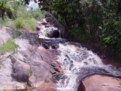 Fazenda com 80 hectares em Amaraji/Pe - REF. 286 - Foto 17