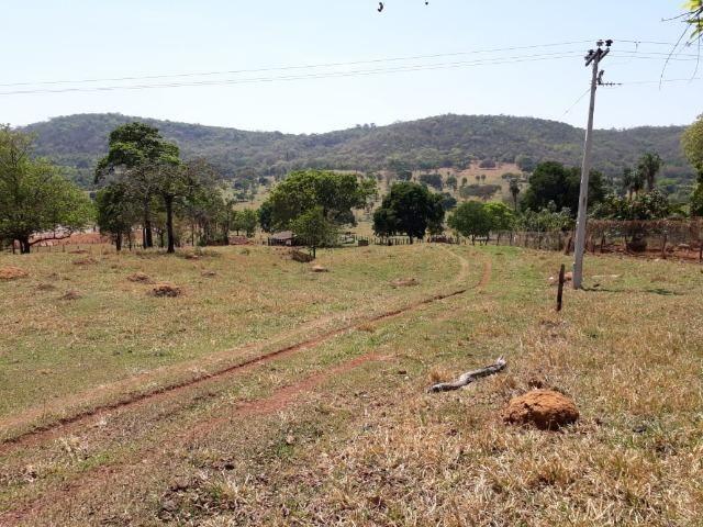 Terreno São Luis Montes Belos - Foto 7