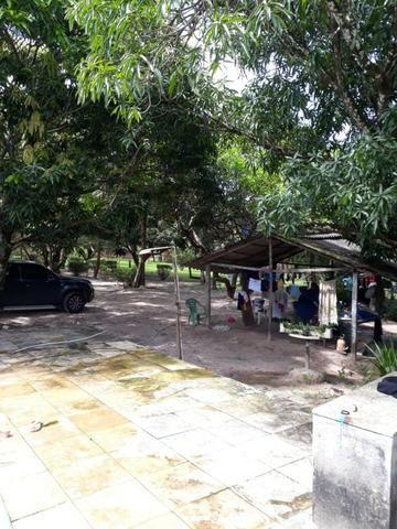 Sitio na Piçarreira - Vendo - Foto 3