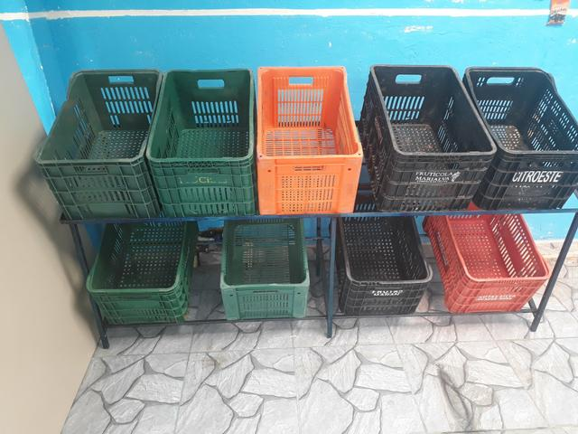 Expositora de frutas e verduras