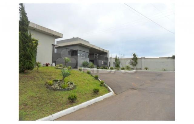 Terreno residencial à venda, vila torres i, campo largo - te0117. - Foto 2