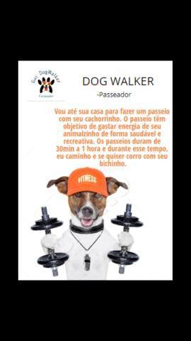 Passeador de cães ( Dog Walker) - Foto 2