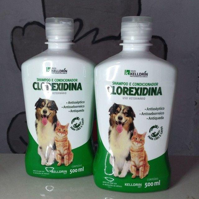 Shampoo Clorexidina 1Un.