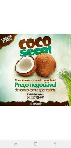 Coco seco de ótima qualidade