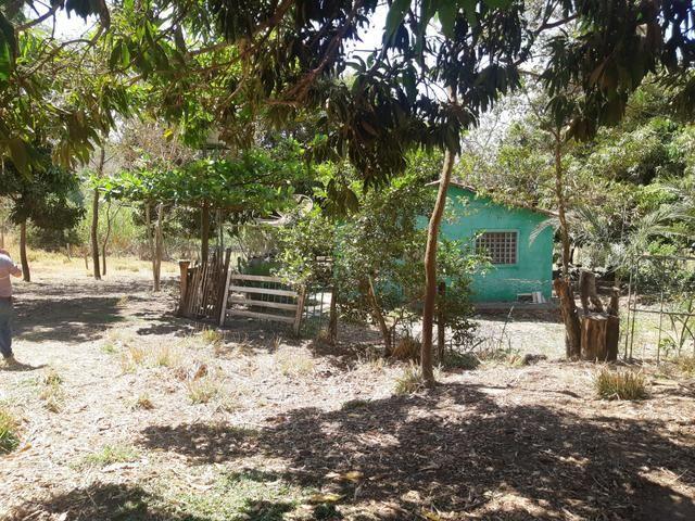 Meio Alqueire em Goiânia Prox a Teresópolis com Casa e Energia e Muita Água - Foto 7