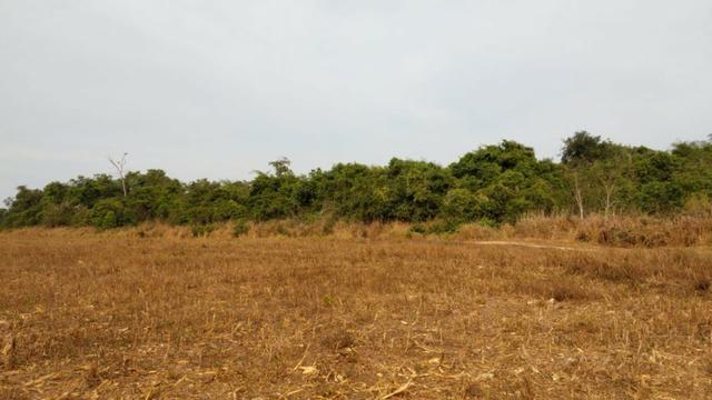 Fazenda Fechada Nova Ubiratã - 1568ha - Foto 4