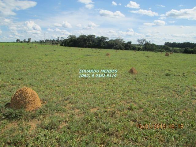 Terra c/ um alqueire sem benfeitorias, 600 metros da BR 060 Abadiânia, expansão Urbana - Foto 8
