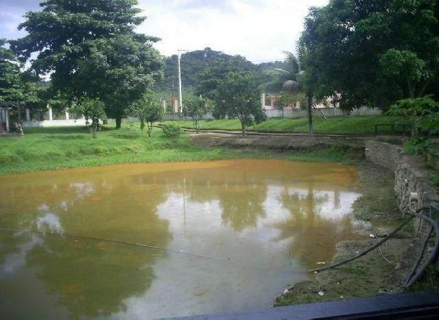 Fazenda/Sítio com 4 Quartos à Venda, 80000 m² por R$ 3.500.000 - Foto 11