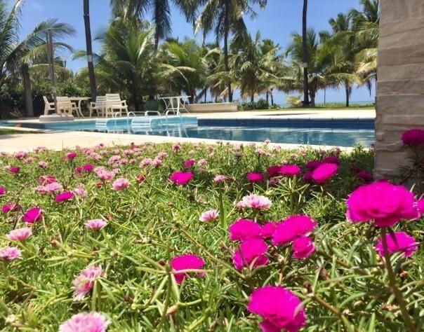 Luxuosa Casa Duplex Á Venda Frente e Beira Mar Morada Da Península Reserva Do Paiva-E - Foto 13