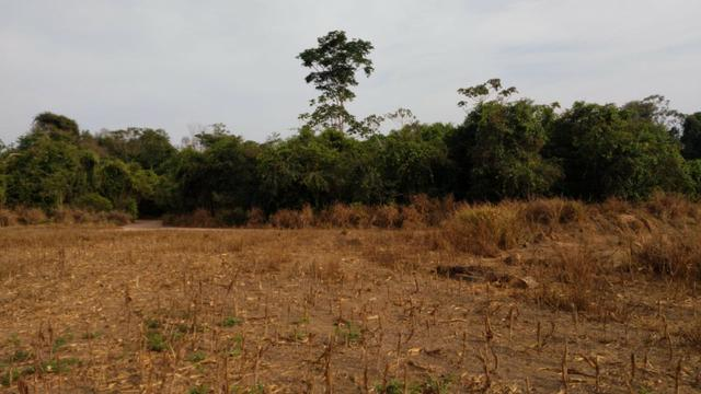 Fazenda Fechada Nova Ubiratã - 1568ha - Foto 2