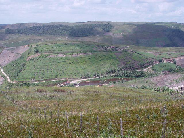 Fazenda com 80 hectares em Amaraji/Pe - REF. 286 - Foto 2